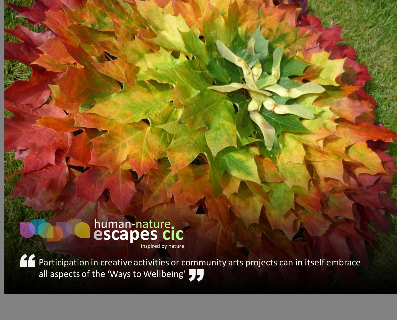 Human-Nature Escapes CIC Creative Arts Projects