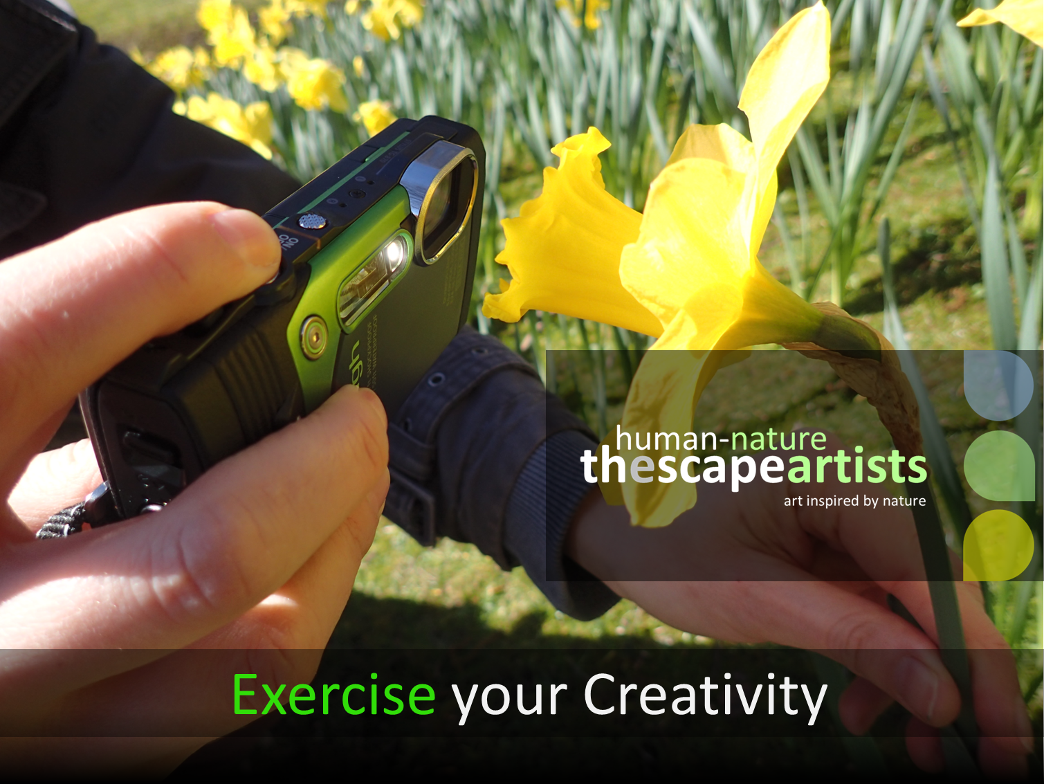 Human-Nature Escapes CIC - Exercise Your Creativity Header Page