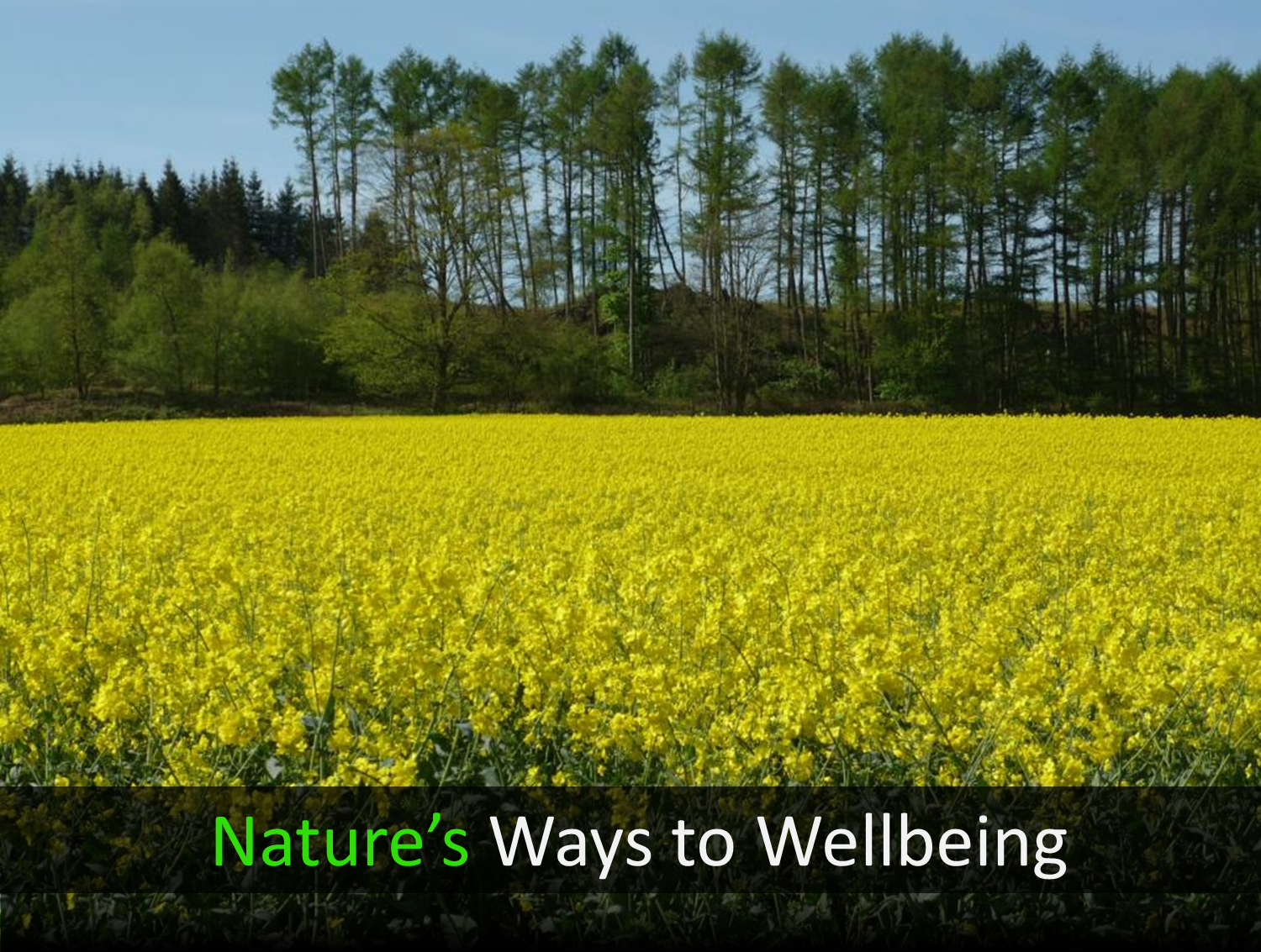 Human-Nature Escapes CIC - Nature's Ways to Wellbeing Page Header