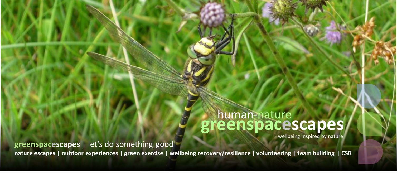 Human-Nature Escapes CIC greenspacescapes