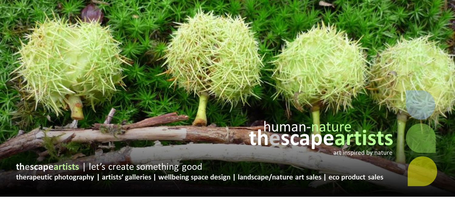 Human-Nature Escapes CIC thescapeartists