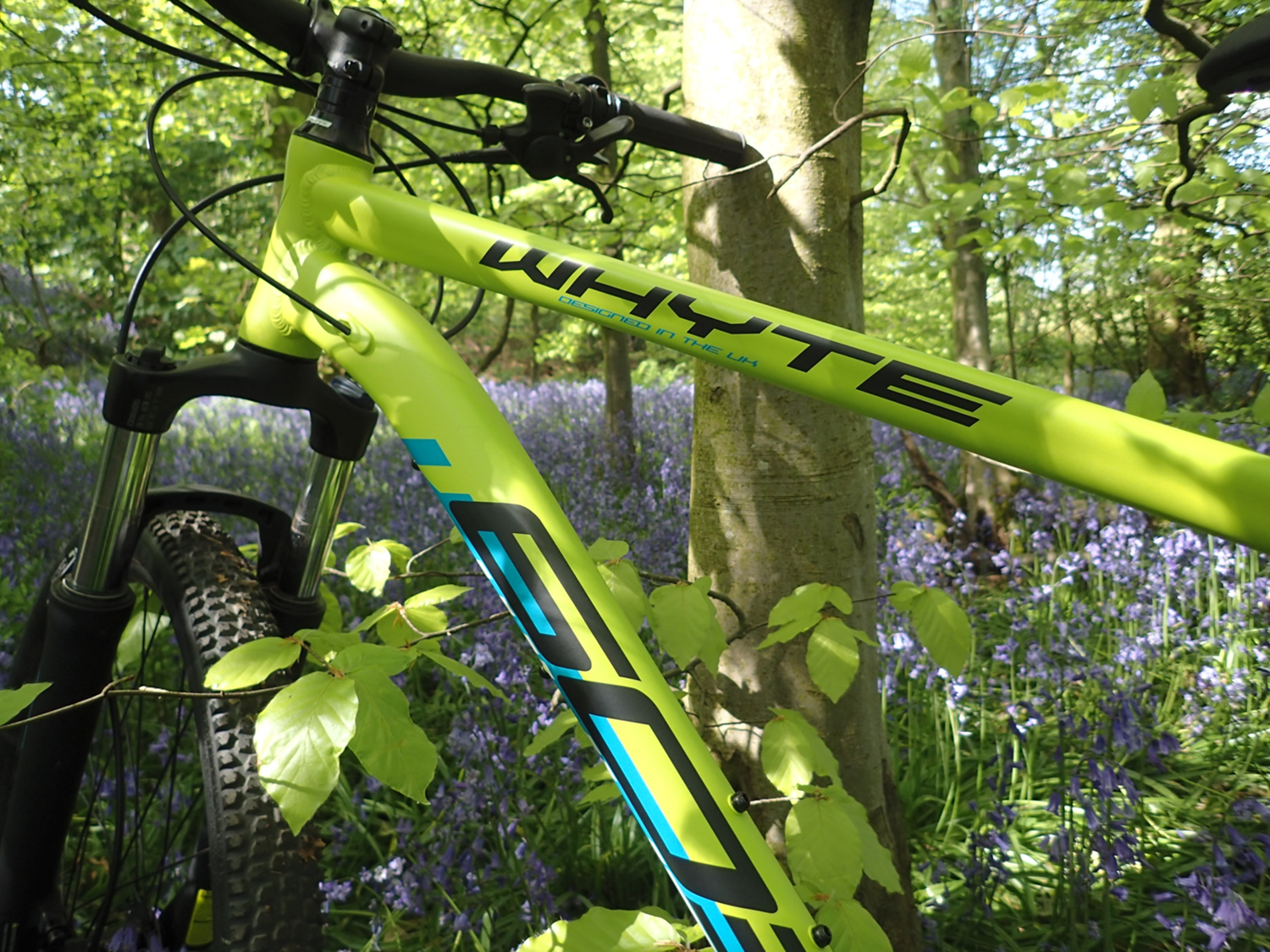 Human-Nature Escapes CIC - Mountain Bike Bluebell Woodland