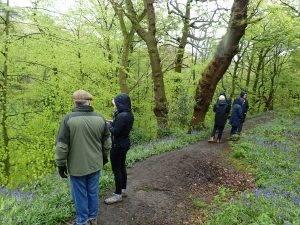 Human-Nature Escapes - Lawton Woods 2